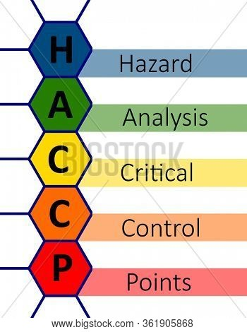 HACCP in colorful honey comb with text acronym