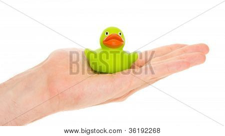 Green Rubber Duck On A Hand