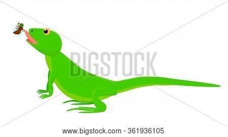 Green Lizard Caught A Fly. Cartoon Lizard Hunting On Flies. Vector Stock Illustration