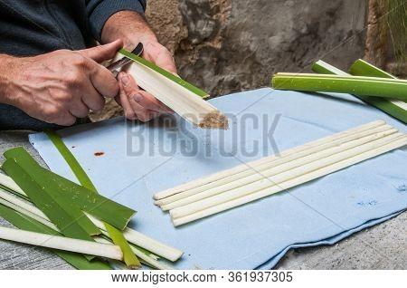 Papyrus Artisan At Work