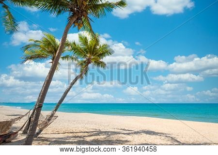 Exotic Tropical Beach Landscape For Background Or Wallpaper. Tranquil Beach Scene For Travel Inspira