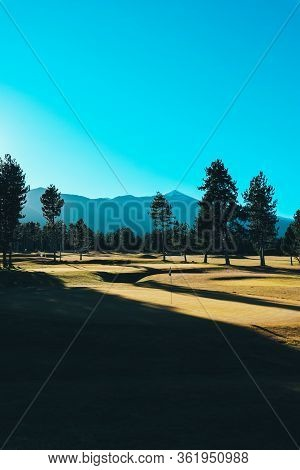 Beautiful Amazing Mountain Meadow Landscape, Clipped Lawn Grass, Spruce Fir Trees, Summertime. Europ