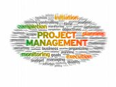 Blurred Project Management illustration on white background. poster