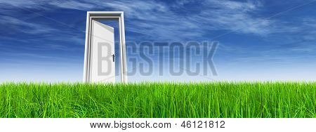 High resolution green, fresh and natural 3d conceptual grass over a blue sky background, a opened door at horizon banner