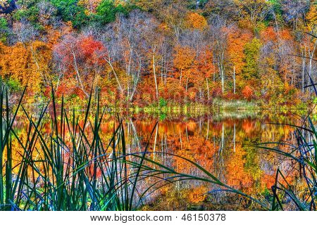 Reflections Of Autumn In High Dynamic Range