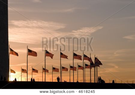 American Flags Around Washington Monument At Sunset