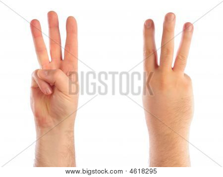 Male Hands Counting Number Three