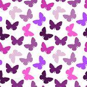 Violet vector seamless butterfly background on white poster