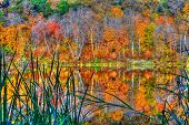 Reflections of Autumn at Williams O'Brian State Park in High Dynamic Range poster