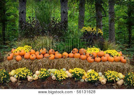 Autumn Outdoor Decor - vibrant