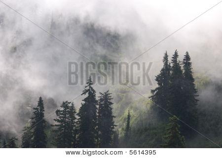 016 Chinook Pass
