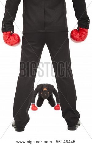 businessman give up the competition with boxing gloves.isolated on white background poster