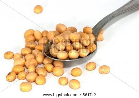 Soyabean Spread