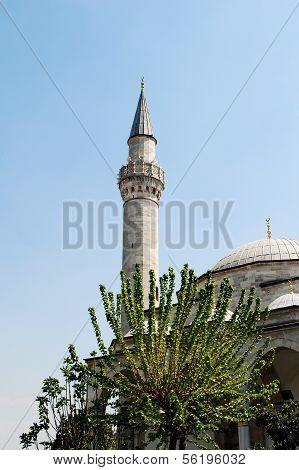 Minaret and Tree