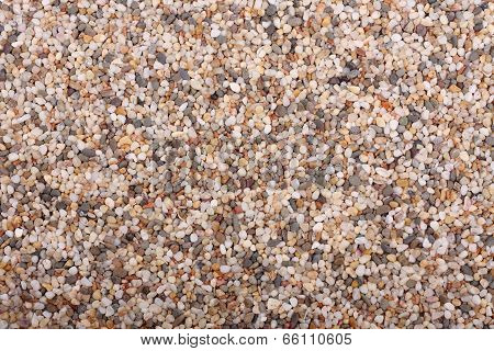 Colorful Small Sea Pebbles