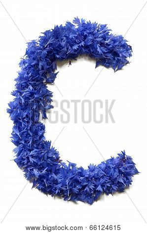 Letter C Made Of Flowers (cornflowers) Isolated On White Background