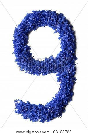 Number 9 Made Of Flowers (cornflowers) Isolated On White Background