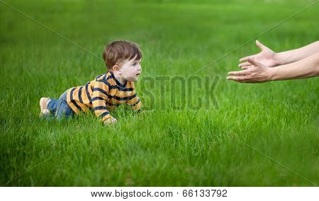 son crawling in her father's hands on green grass