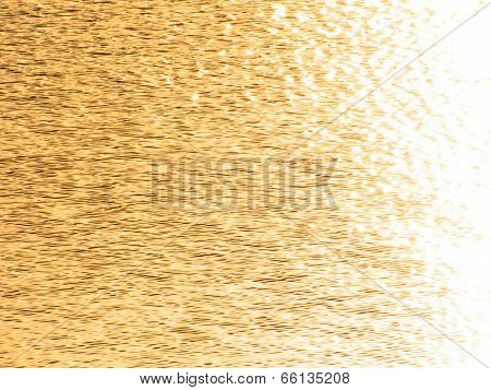 Golden wavelets on the surface of water