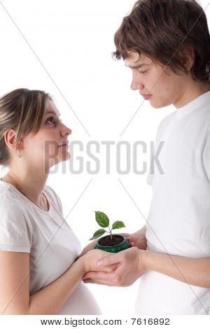 Concept Of Birth.