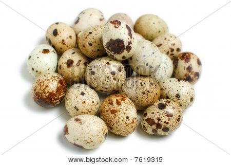 Pile of quail eggs shot on the white background poster