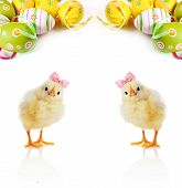 Cute Fluffy chicks and Easter Eggs on a light background poster