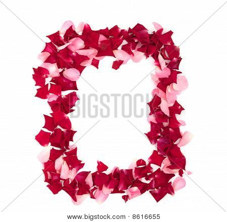 Framework From Rose-petals