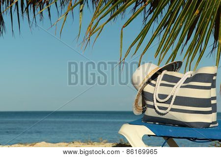 Beach Gear Under Palm Tree