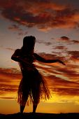 a silhouette of a Hawaiian woman dancing in the outdoors. poster