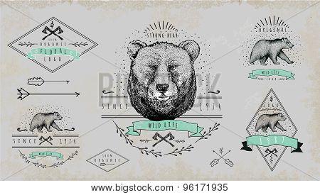 Set of vintage  bear logo. Design for t-shirt.