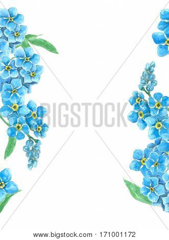 Forget Me Not  Borders