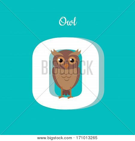 Animal alphabet vector concept. Flat style. Zoo ABC with wild predatory bird. Cute owl sitting on letter O on blue background. Educational glossary. For children s books, textbooks illustrating