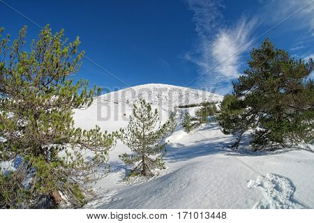 snow covered slopes in Etna Park to climb to the top, Sicily