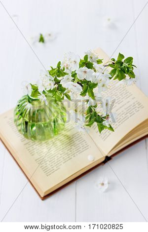 Beautiful blossom branch of cherry-tree in a glass vase with open vintage book on a white background.