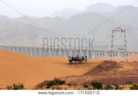 landscape in northwest of China Shapotou Ningxia province