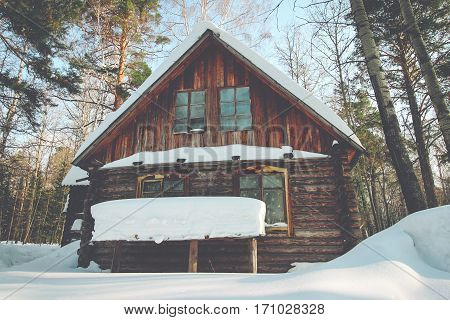 A small wooden hut in the forest