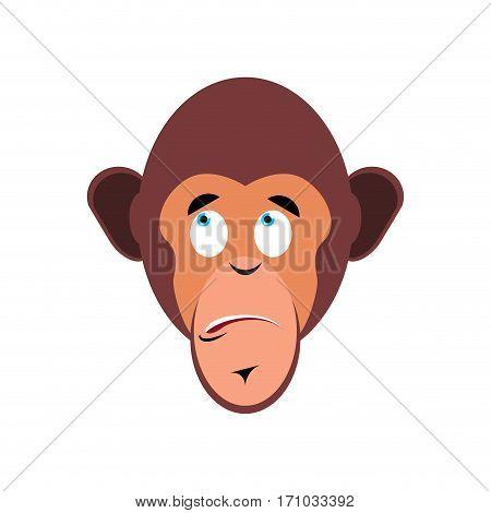 Monkey Surprised Emoji. Marmoset Astonished Emotion Isolated. Chimpanzee Face