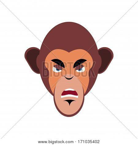 Monkey Angry Emoji. Marmoset Aggressive Emotion Isolated. Chimpanzee Face