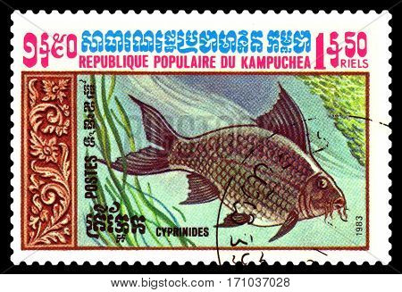 STAVROPOL RUSSIA - February 10 2017 : A Postage Stamp Printed in the Cambodia Shows Crucian circa 1983