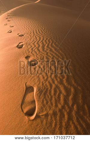 Footprints in the sand on a sand dune in the desert of Morocco.