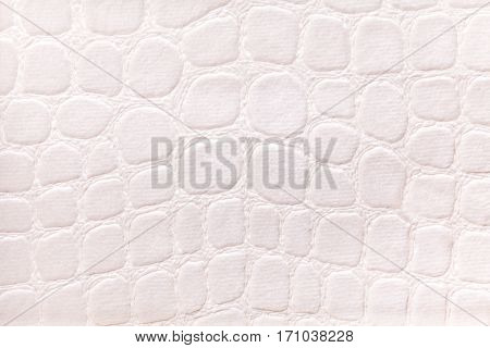 White background from a soft upholstery textile material closeup. Fabric with pattern imitating crocodile skin.. Textured backdrop.