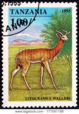TANZANIA - CIRCA 1995: a stamp printed in Tanzania shows Gerenuk litocranius walleri is an African antelope circa 1995