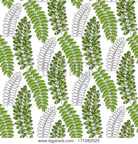 Bright textile pattern with acacia leaves. Vector background for packaging and fabric design.