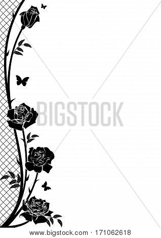 vector border with rose butterflies and lattice in black and white color