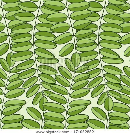 Vector Seamless pattern with acacia leaves. Spring background for packaging, textile and fabric design.