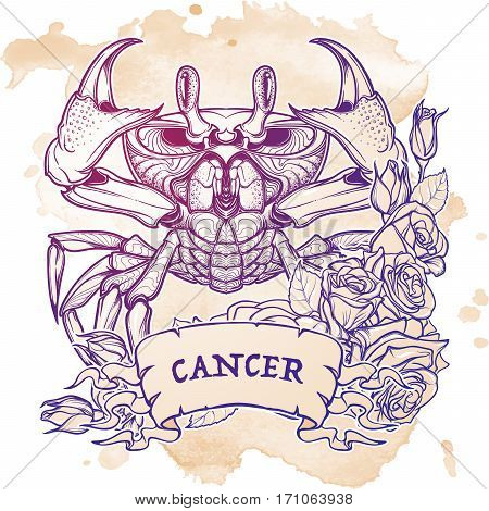 Zodiac sign - Cancer. Accurate symmetrical drawing of the beach crab with a frame of roses. Concept art for tattoo, horoscope. Coloring book illustration. Linear drawing itolated on grunge background