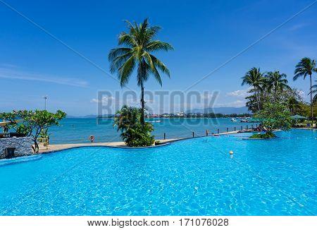 Swimming Pool View, Kota Kinabalu, Sabah Borneo, Malaysia.