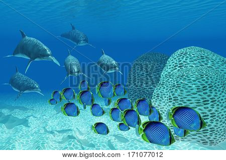 Bottlenose Dolphins Underwater 3d illustration - A pod of Bottlenose dolphins chase after a school of Black-backed butterflyfish on a coral reef in tropical ocean waters.