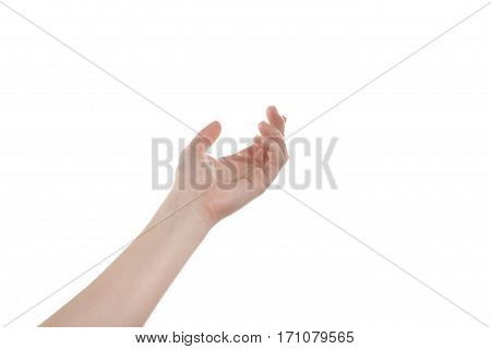 Open girl's hand isolate on a white background