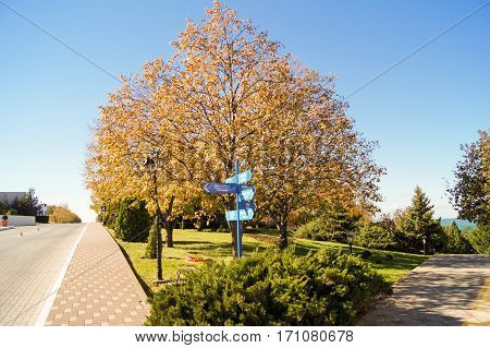 Novorossiysk, Russia - 26 October, Autumn park with paths, 26 October, 2016. Plants and trees in a suburban landscape design.